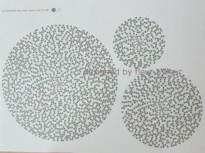 画像3: ガラス用 mosaic circle (モザイクサークル) 円形